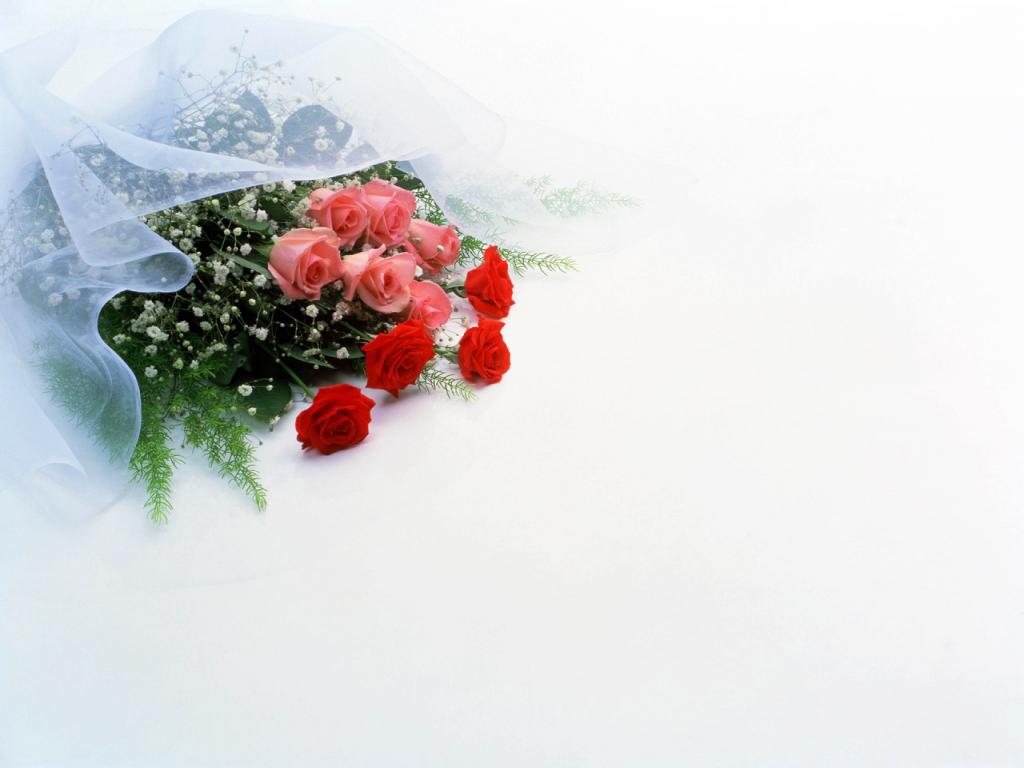 cvety_lyubvi-1024x768
